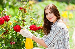 Affordable Gardening Services around SW1 District
